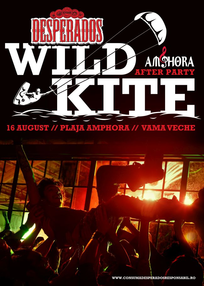 KV_Poster_Wild Kite