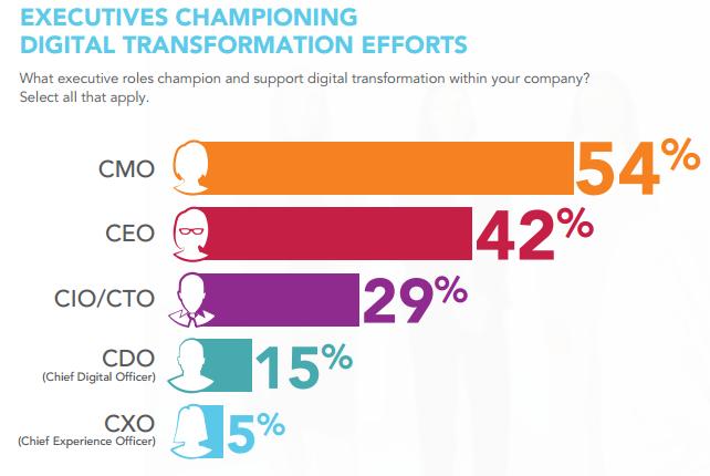 who leads digital transformation