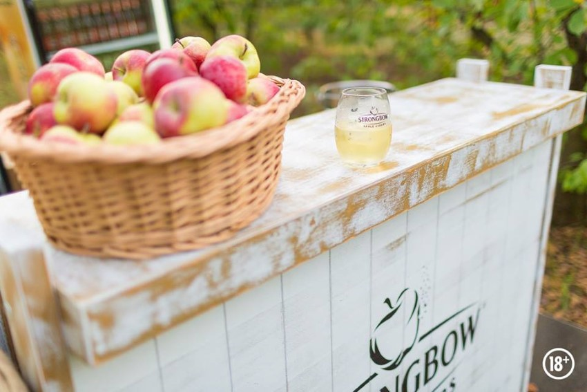 strongbow appletone party (2)